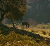 paisagens-landscapes 05