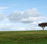 paisagens-landscapes 06