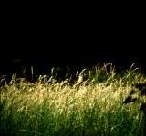 paisagens-landscapes 11