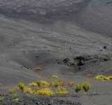 paisagens-landscapes 20