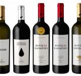 vinhos-wines 04